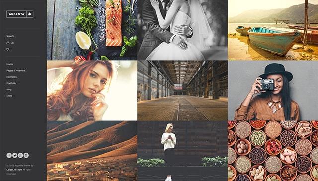 Photographer Gallery
